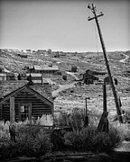 Canon Eos 50d Photos - Telephone Pole Bodie CA by Troy Montemayor
