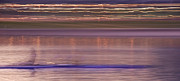 Rower Prints - Tempe Town Lake Rowers Abstract 3 Print by Dave Dilli