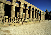 Y120907 Art - Temple Of Karnak, Luxor - Egypt by Hisham Ibrahim