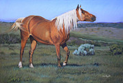 Horse Pastels Originals - Temptress 3 by Deb LaFogg-Docherty