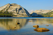 Lynn Bauer Photos Photo Prints - Tenaya Lake Print by Lynn Bauer