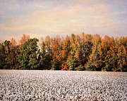 Autumn Landscape Art - Tennessee Cotton by Jai Johnson