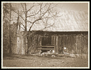 Tennessee Farm Digital Art Prints - Tennessee Farm Old Barn Print by Phil Perkins