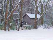 Snow On Barn Posters - Tennessee Horse Barn In Winter Poster by Garland Johnson