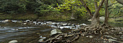 Water Flowing Posters - Tennessee Stream Panorama 6045 6 Poster by Michael Peychich