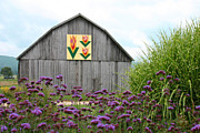 Tennessee Barn Digital Art Posters - Tennessee Tulip Poster by Annlynn Ward
