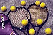 Steve Ohlsen Metal Prints - Tennis Still Life 3 Metal Print by Steve Ohlsen