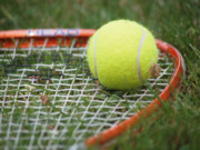 Tennis Ball Photos - Tennis by Valerie Morrison