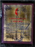 Certificates Framed Prints - Termitecomp10 2008 Framed Print by Glenn Bautista
