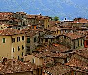 Interesting Architecture Posters - Terra-Cotta Roofs Barga Vecchia Italy Poster by Nicola Fiscarelli