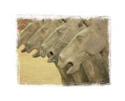 Qin Photos - Terracotta Horses by Carol Groenen