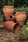 Garden Ornaments Posters - Terracotta Pots Poster by Adrian Thomas