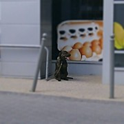 Petstagram Art - #tesco #szekszrd #hungary #kutya #dog by Tibor Kiraly