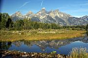 Teton 5 Print by Marty Koch