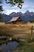 Teton Barn 2 Print by Marty Koch
