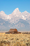 Teton Mormon Barn Print by Bob and Nancy Kendrick