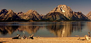 Teton Panoramic Print by Marty Koch