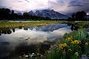 Rocky Mountains Framed Prints - Teton Reflections Framed Print by Eric Foltz