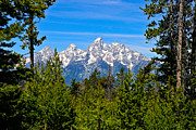 Grand Teton Framed Prints - Teton Window Framed Print by Greg Norrell