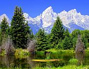Marty Koch Framed Prints - Tetons 3 Framed Print by Marty Koch