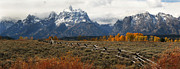 Split Rail Fence Photos - Tetons Fenceline by Clare VanderVeen