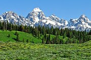Grand Tetons Prints - Tetons in Spring Print by Greg Norrell