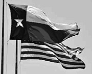 Absolutely Austin Posters - Texas and USA Flags Flying BW45 Poster by Scott Kelley
