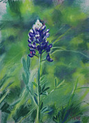 Blue Flowers Pastels - Texas Beauty by Billie Colson