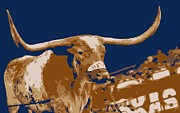 Texas Longhorns Digital Art Posters - Texas Bevo Color 6 Poster by Scott Kelley
