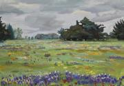 Country Western Paintings - Texas Bluebonnets by Maris Salmins