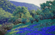 Live Oak Trees Paintings - Texas Hill Country Blues by Russell Cushman