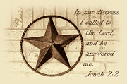 Jonah Art - Texas Iconic Star by Linda Phelps