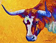 Longhorns Posters - Texas Longhorn Cow Study Poster by Marion Rose