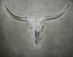 Cow Drawings Framed Prints - Texas Longhorn Framed Print by Michael Trujillo