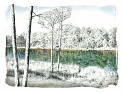 Texas Pastels Originals - Texas Winter Lake by Tess Lee miller