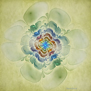 Apophysis Digital Art Prints - Textured Apophysis Flower Print by Deborah Benoit