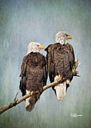 Jeff Swanson Metal Prints - Textured Eagles Metal Print by Jeff Swanson