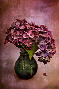 Hortensia Framed Prints - Textured Hydrangea Framed Print by Ann Garrett