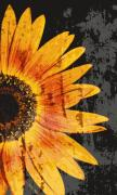 Blooms Mixed Media Acrylic Prints - Textured Sunflower Acrylic Print by Cathie Tyler