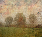 Textured Trees Print by Roni Chastain