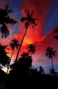 Tropical Digital Art Originals - Thailand sunset by Alessandro Matarazzo