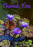 Floral Greeting Card Posters - Thank You - Water Lilies Poster by Kerri Ligatich
