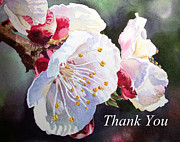 Tree Blossoms Paintings - Thank you Card Apricot Blossom by Irina Sztukowski