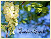 Greeting Card Photos - Thanks a Bunch by Kristin Elmquist