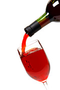 Pouring Wine Photos - Thanks by Olivier Le Queinec