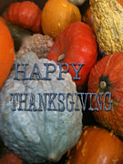 Fall Holiday Card Posters - Thanksgiving Gourd Card Poster by Debra     Vatalaro