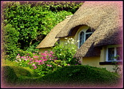 Charming Cottage Posters - Thatched Cottage with Pink Flowers Poster by Carla Parris
