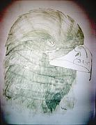 Eagle Drawing Drawings Originals - The 911 Eagle by Roy Penny