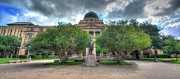 Texas A Prints - The Academic Building Print by David Morefield