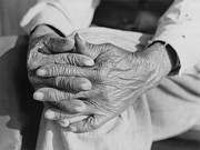 Elderly Hands Prints - The Aged Hands Of Mr. Henry Brooks Print by Everett